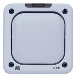 55400 GRY – Echo 1G Switch Transmitter