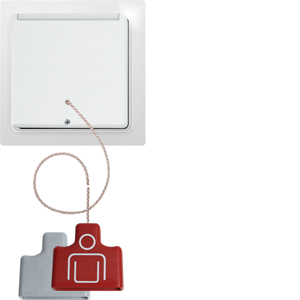 Wireless pull switch FZS65-wg